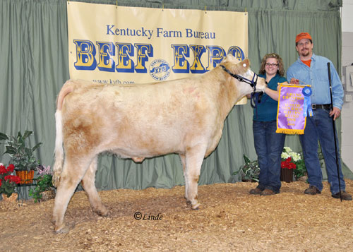 2009 Grand Champion Female Beefalo